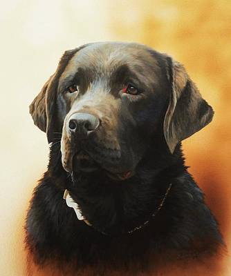 Labrador Painting - Tilly by Julian Wheat