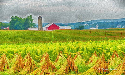 Photograph - Tobacco Farm by R Thomas Berner