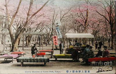 Tokyo Park Circa 1910 Art Print by Patricia Hofmeester