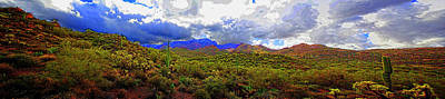 Photograph - Tonto National Forest by Roger Passman
