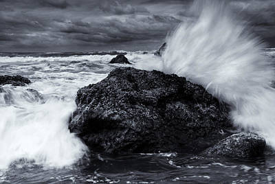 Barnacles Wall Art - Photograph - Too Close For Comfort by Mike  Dawson
