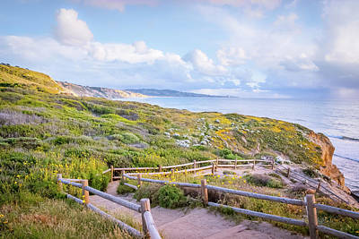 Photograph - Torrey Pines Trail by Shuwen Wu
