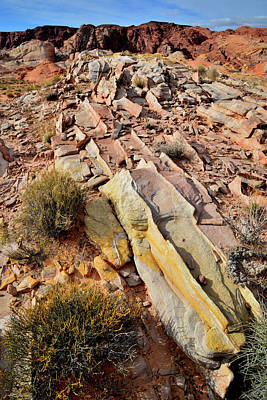 Photograph - Tracks Of Color In Valley Of Fire by Ray Mathis
