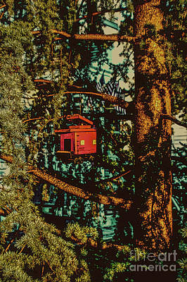 Train Bird House Art Print