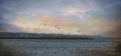 Photograph - Tranquility  by Diane Giurco