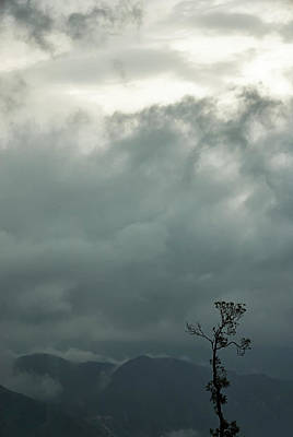 Photograph - Tree And Mountain  by Rajiv Chopra