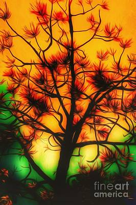 Photograph - Tree Of Wishes  by Jessica Shelton
