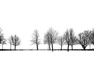 Trees Art Print by Chevy Fleet