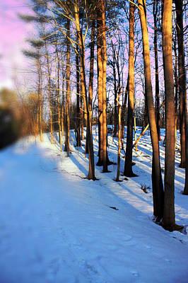 Snow Digital Art - Trees Photography by Mark Ashkenazi