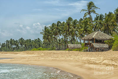 Photograph - Tropical Beach With Low Key Restaurant by Patricia Hofmeester