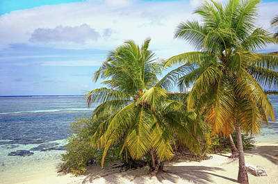 Photograph - Tropical Island by Jenny Rainbow