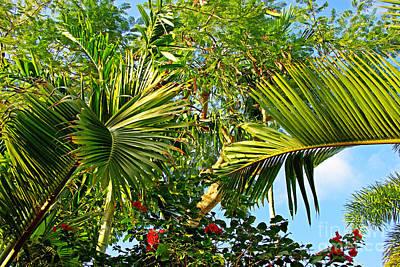 Tropical Plants Print by Zalman Latzkovich