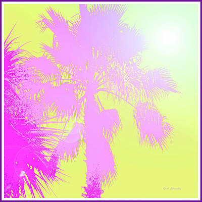 Digital Art - Tropical Sunset With Palm Tree Silhouette by A Gurmankin