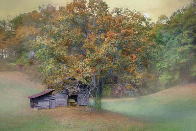 Photograph - Tucked Away by Lori Deiter