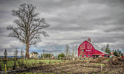 Photograph - Tulip Barn by Steph Gabler