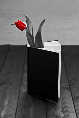 Literature Photograph - Tulip In A Book by Joana Kruse