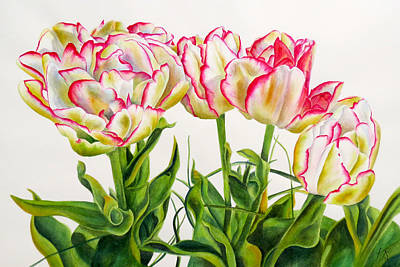 Wall Art - Painting - Tulips Of Holland by Kristina Spitzner