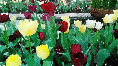 Painting - Tulips Red And Yellow by Leah Lambart