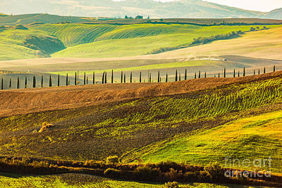 Harvested Photograph - Tuscany Fields Autumn Landscape, Italy. Harvest Season by Michal Bednarek