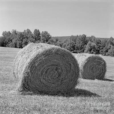 Photograph - Two Bales by Patrick M Lynch