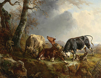 Painting - Two Bulls Defending A Cow Attacked By Wolves by Jacques Raymond Brascassat