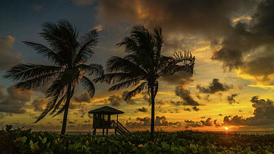 Photograph - Two Palm Sunrise Delray Beach Florida by Lawrence S Richardson Jr
