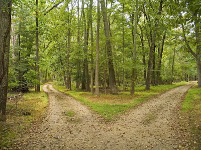 Photograph - Two Paths by Andrew Kazmierski