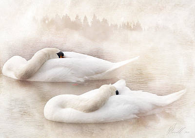 Digita Art Digital Art - Two Swans by Svetlana Sewell