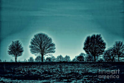 Photograph - Two Trees by Rick Bragan