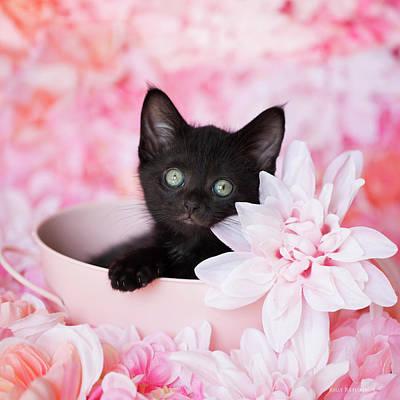 Photograph - Tye Pink Floral by Kelly Richardson