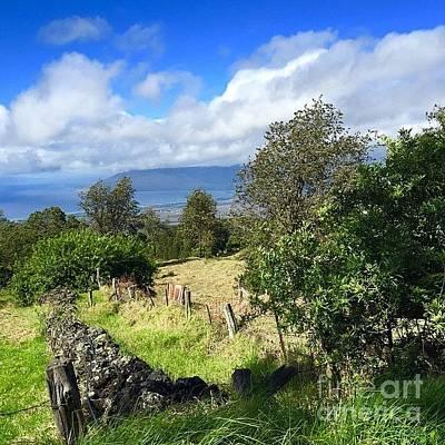 Photograph - #ulupalakua #upcountry #maui #hawaii by Sharon Mau