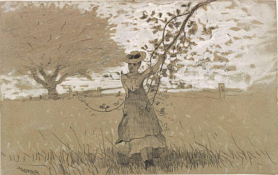 Winslow Homer Drawing - Under The Apple Boughs by Winslow Homer