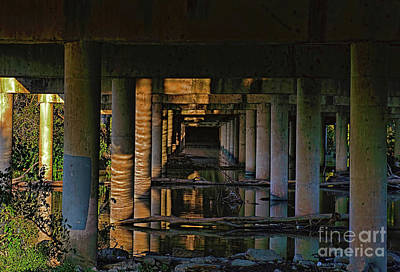 Photograph - Under The Bridge by Diana Mary Sharpton