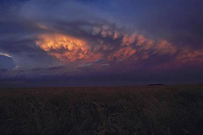 United States, Kansas,  Wheat Field Print by Keenpress