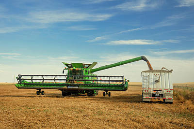 Emptying Photograph - Unloading Chickpeas by Todd Klassy