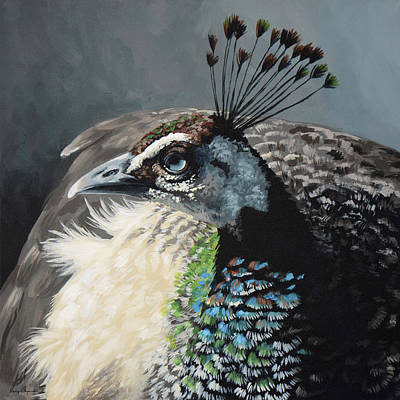 Peafowl Painting - Untitled by Lesley Alexander
