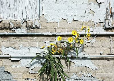 Digital Art - Up Against The Wall by Ellen Barron O'Reilly