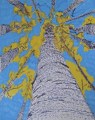 Up At Birch Art Print by James SheppardIII