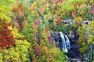 Photograph - Upper Whitewater Falls by Willie Harper