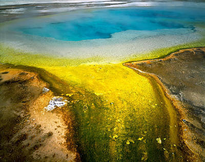Morning Glories Photograph - Usa, Wyoming, Yellowstone National by Panoramic Images