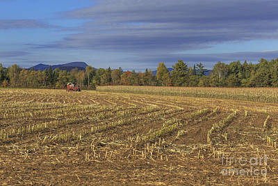 Cornfields Photograph - Vermont Cornfield  by Edward Fielding