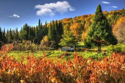 Vermont Fall Foliage Art Print