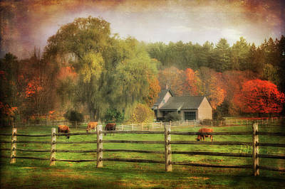Photograph - Vermont Farm In Autumn by Joann Vitali
