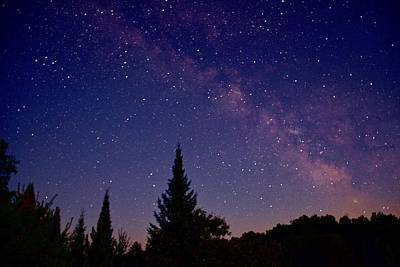 Photograph - Milky Way Over The Huron National Forest by Michael Peychich