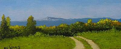 View From The Rim Art Print by Fred Wilson