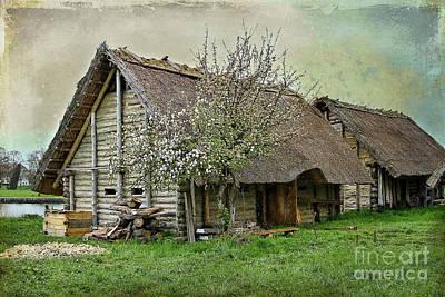 Photograph - Viking Village by Teresa Zieba