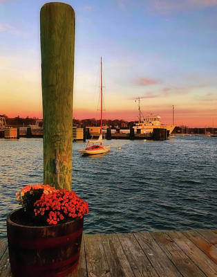 Photograph - Vineyard Haven Sunrise - Martha's Vineyard by Joann Vitali