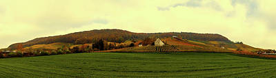 Photograph - Vineyard In Autumn - Germany by Pixabay