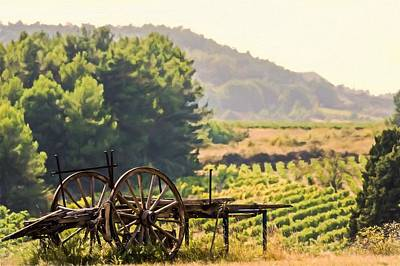 Wine Cart Photograph - vineyard in France by Elly De vries