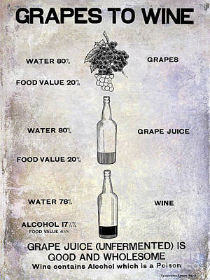 Vintage Grape To Wine Chart Art Print by Jon Neidert